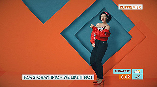 Tom Stormy Trio: We Like It Hot